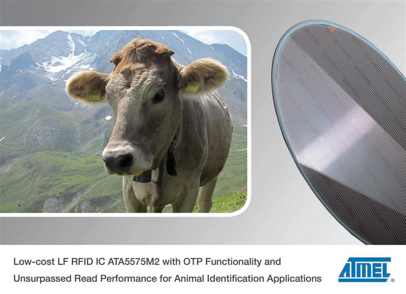 Atmel Launches Cost Effective LF RFID IC for Animal Identification Applications