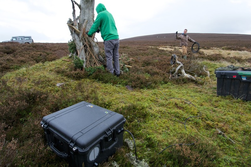 Fuel cell technology used to help capture rare wildlife footage in Scotland