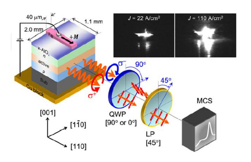 Tokyo Institute of Technology research finds surprising GaN LED spin behavior at room temp