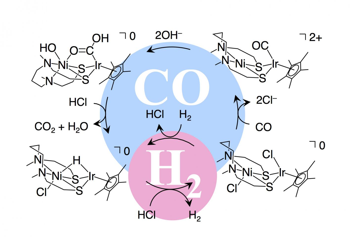 Multifunctional catalyst for poison-resistant hydrogen fuel cells