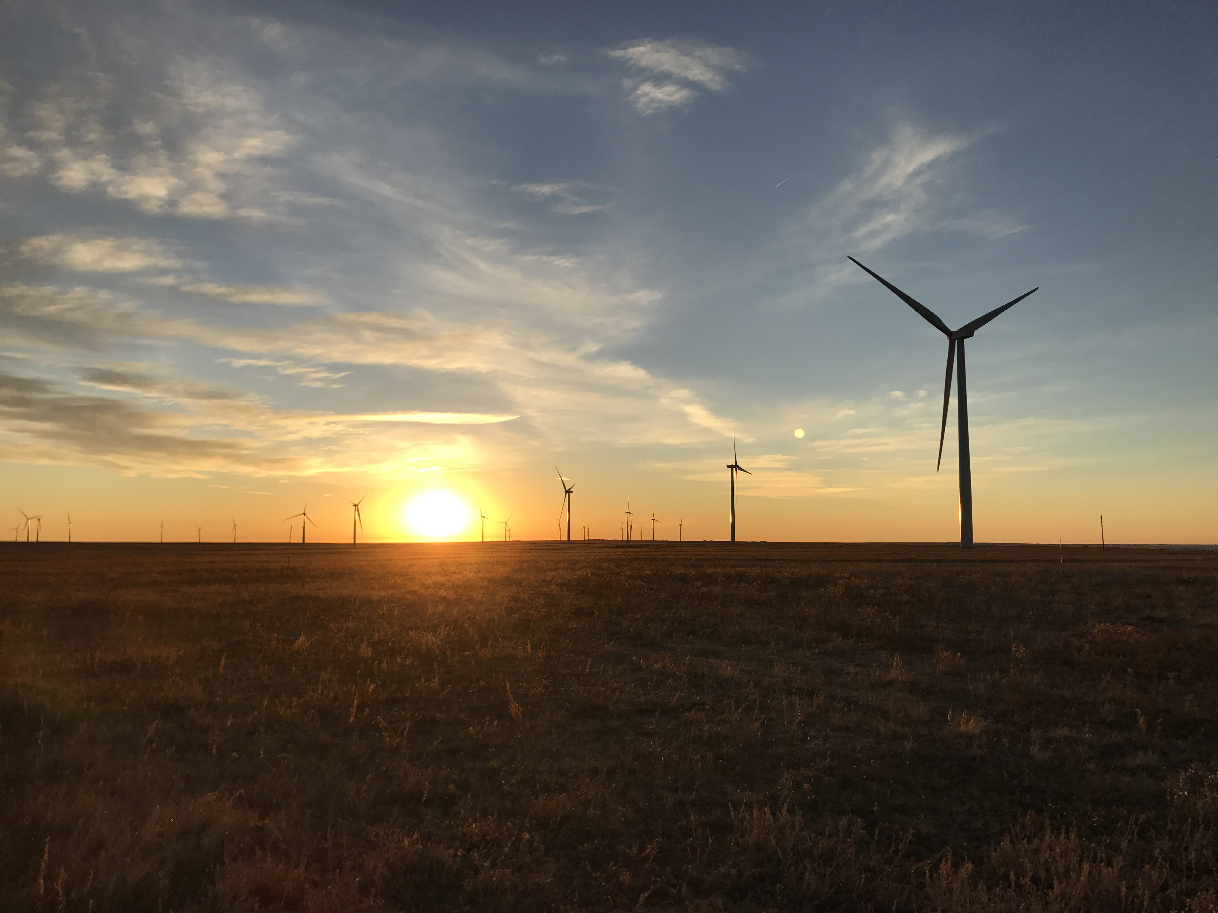 PSDcast - Preventing Catastrophic Damage to Wind Turbines