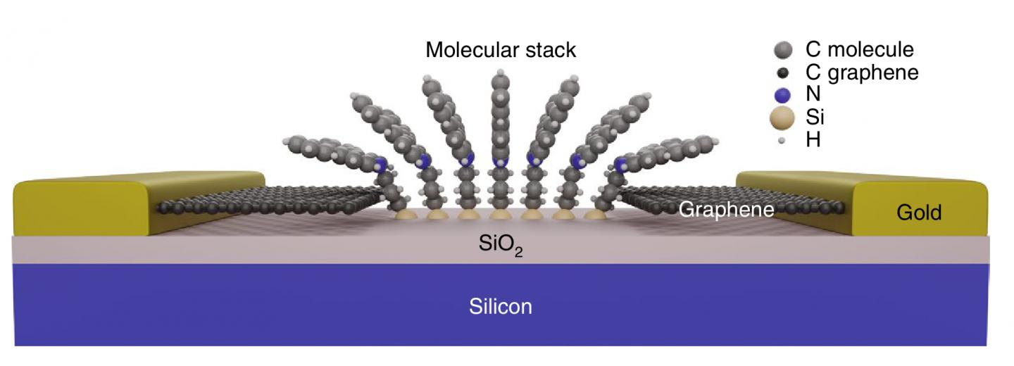 Catch-22 in Graphene-Based Molecular Devices Resolved