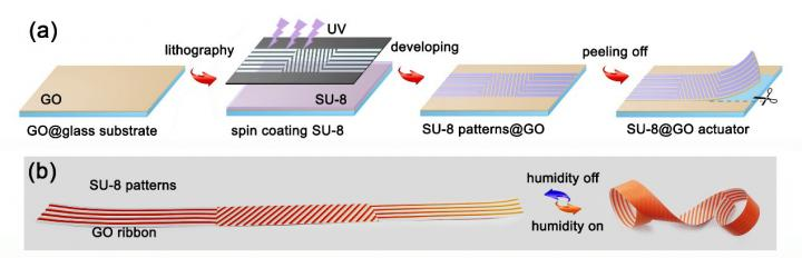 Graphene-Based Actuator Swarm for Programmable Deformation