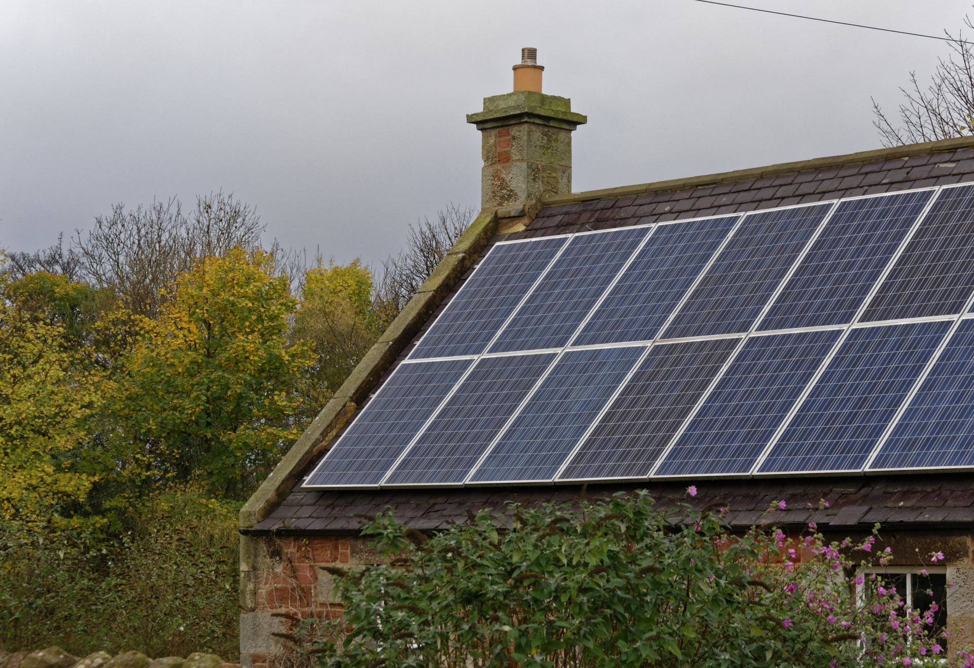 Pressure from Lobbying Groups Could Kill Rooftop Solar